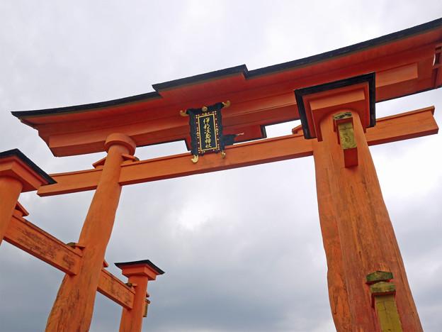 宮島・干潮時の大鳥居(3)