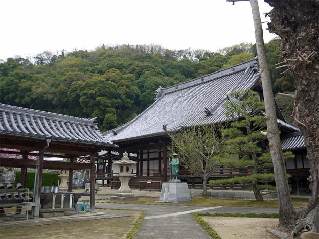 龍頭山照蓮寺(1)