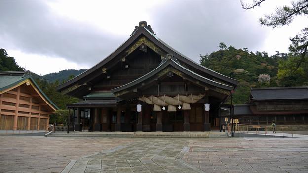 出雲大社(24)拝殿