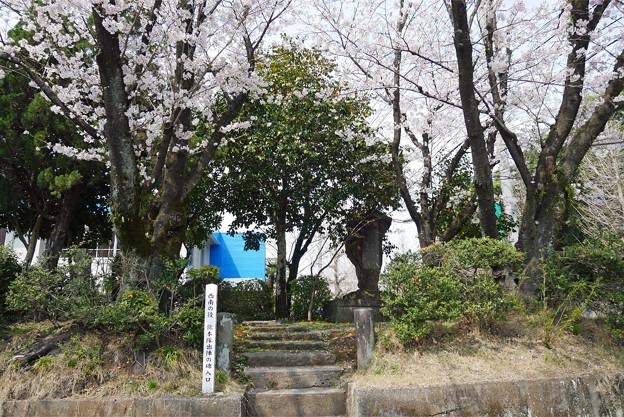 健軍神社(11)