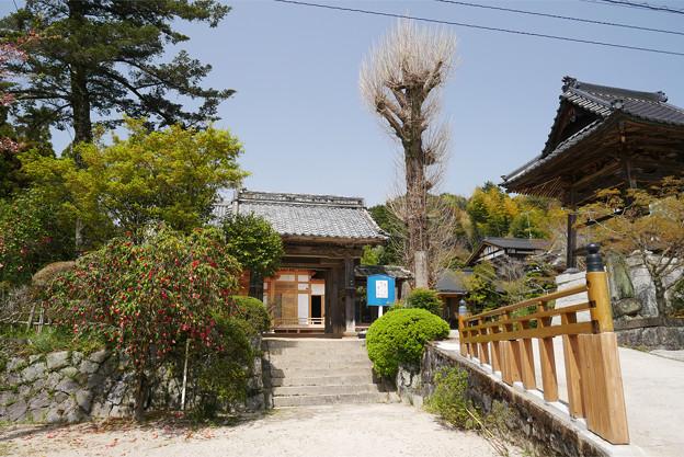 光蔵寺(11)