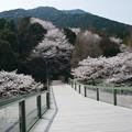 Photos: 仁比山公園(8)