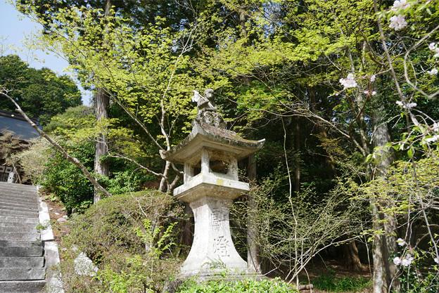 仁比山神社(14)