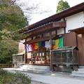 Photos: 仁比山地蔵院(2)