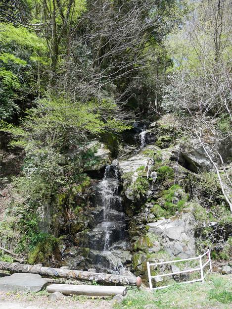 虹の谷公園 (2) 虹の滝