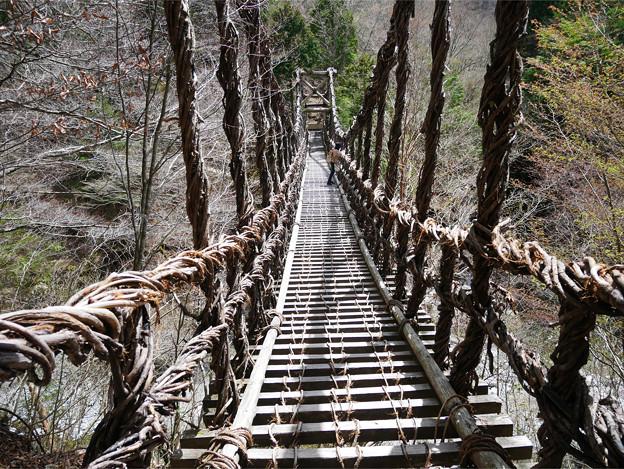 奥祖谷二重かずら橋 (2) 男橋