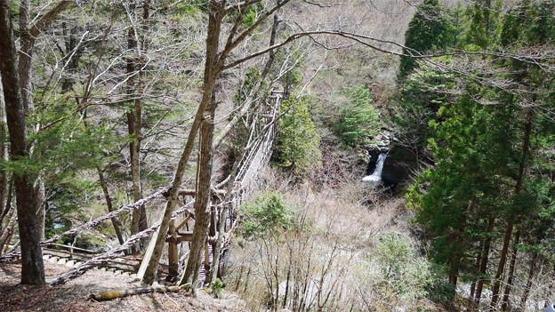 奥祖谷二重かずら橋 (1) 男橋と滝