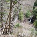 写真: 奥祖谷二重かずら橋 (1) 男橋と滝