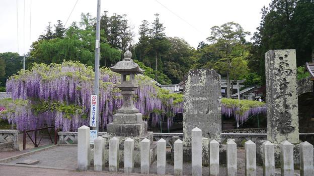 西寒多神社 (8)