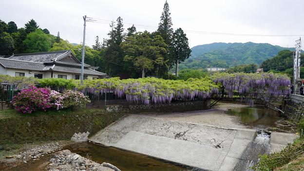 西寒田神社 (2)