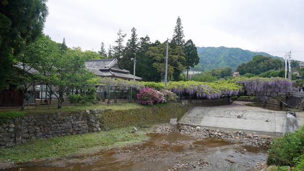 西寒田神社 (1)