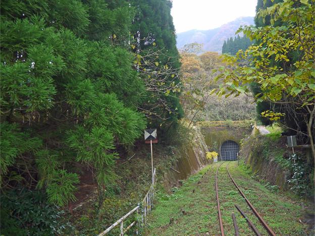 あまてらす鉄道@2014 (20)