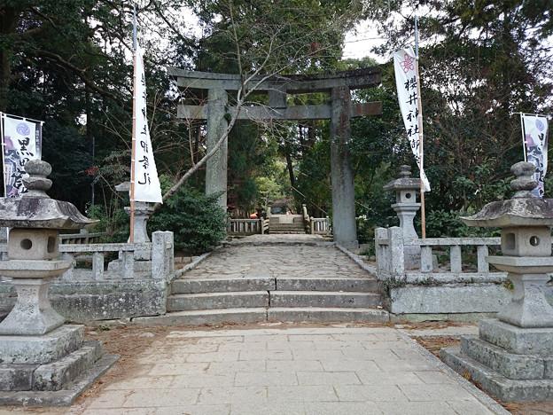 桜井神社 (3)