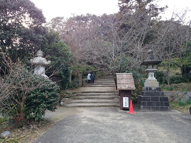 桜井神社 (1)