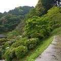 Photos: 宗生寺 (5)