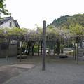 宗生寺 (16)