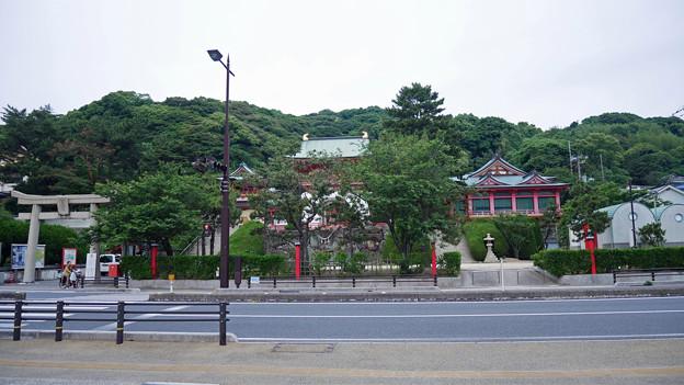 赤間神宮 (1)