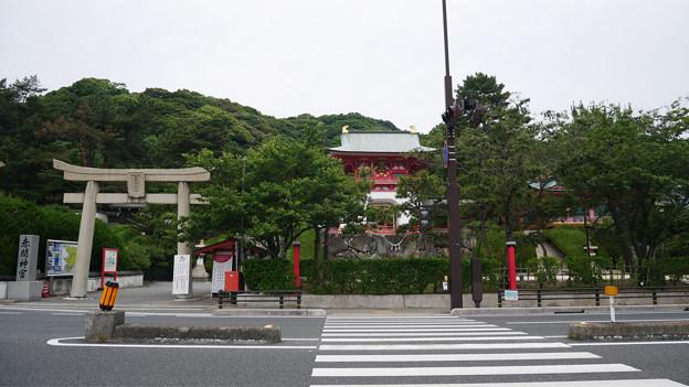 赤間神宮 (23)