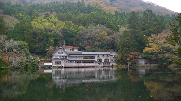 写真: 金鱗湖 (2)