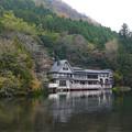 写真: 金鱗湖 (1)