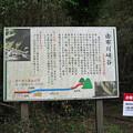 由布川峡谷 (1)