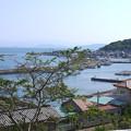 写真: 相島 (13)