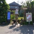 写真: 相島 (4)