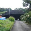 写真: 宮崎市本郷地区の掩体壕 2 (2)