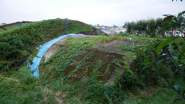 写真: 宮崎市本郷地区の掩体壕 3 (6)
