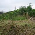 写真: 宮崎市本郷地区の掩体壕 1 (4)