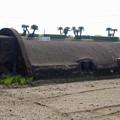 写真: 赤江飛行場の弾薬庫跡 (7)