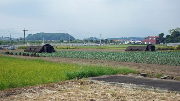 赤江飛行場の弾薬庫跡 (1)
