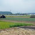 写真: 赤江飛行場の弾薬庫跡 (1)