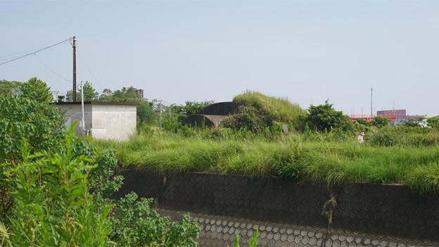 赤江飛行場の掩体壕。のお尻 part4