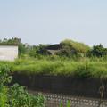 写真: 赤江飛行場の掩体壕。のお尻 part4
