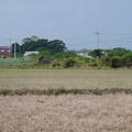 写真: 赤江飛行場の弾薬庫跡 (14)