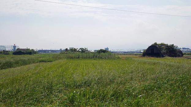宮崎空港横の掩体壕 6号基と7号基