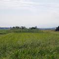 写真: 宮崎空港横の掩体壕 6号基と7号基