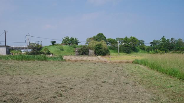 写真: 宮崎空港横の掩体壕 6号基 (8)