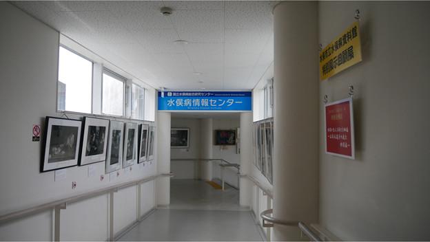 水俣病情報センター (1)