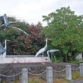 箱崎八幡神社 (16)