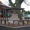出水麓歴史館 (2)