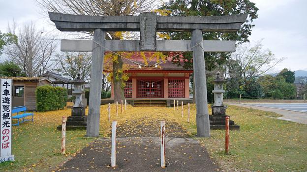 出水護国神社 (2)