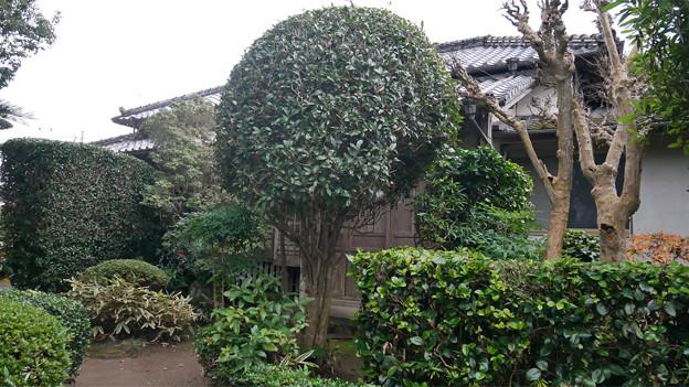武宮邸前 (2)-2