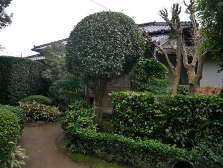 武宮邸前 (2)