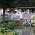 Photos: 湯川内温泉 かじか荘 (9) 上の湯