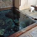 Photos: 湯川内温泉 かじか荘 (12) 上の湯