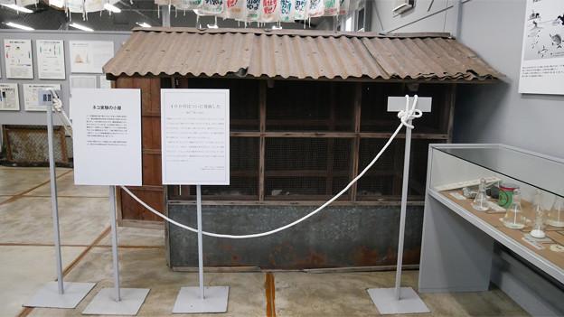 水俣病歴史考証館 (7)