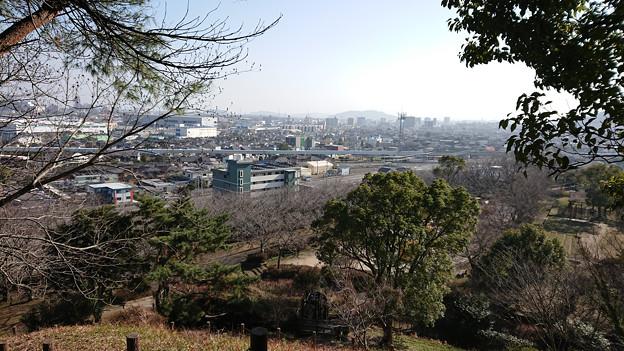 向山公園 (3)