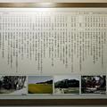きつき城下町資料館 (11)